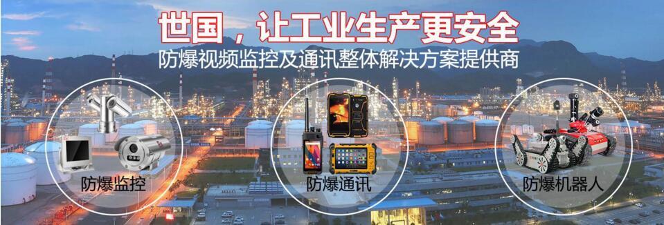 工业防爆视频监控提供商